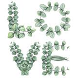 Słowo miłość z liści akwarela i eukaliptusa - 159457878