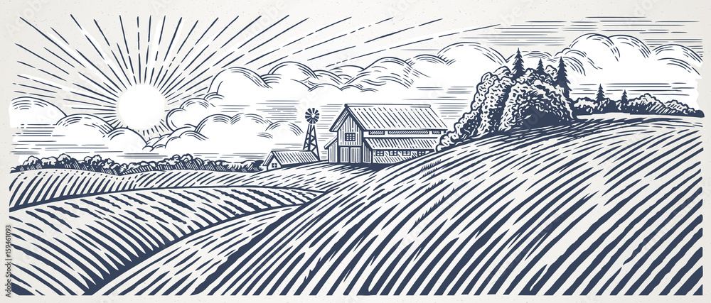 Fototapeta Rural landscape with a farm in engraving style. Hand drawn and converted to vector Illustration