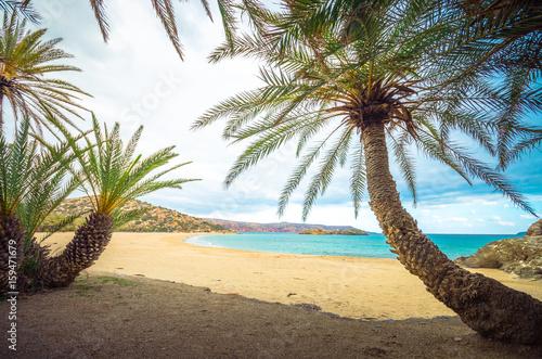 sceniczny-krajobraz-drzewka-palmowe-chmury-i-tropikalna-plaza-vai-crete-grecja