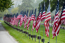 American Flags Line Roadway