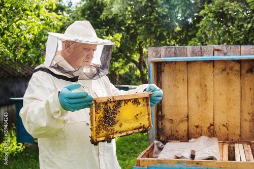 Photo beekeeper with bees outdoor