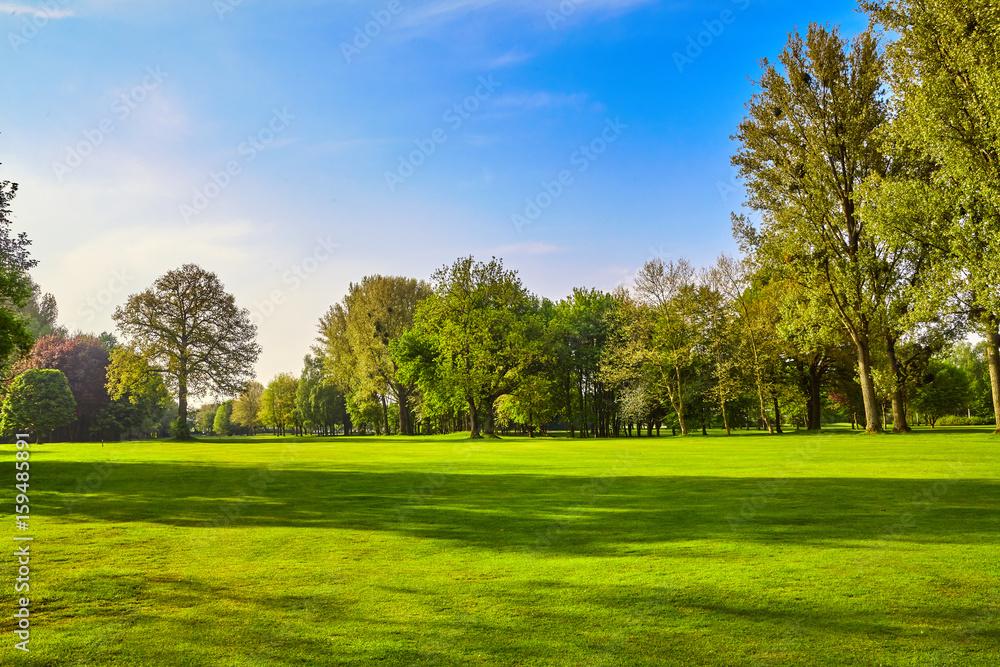 Fototapety, obrazy: City park. Panorama of a beautiful  park
