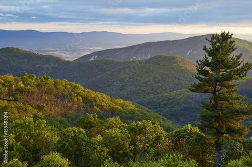 Fotografie, Obraz  Shenandoah National Park, Virginia
