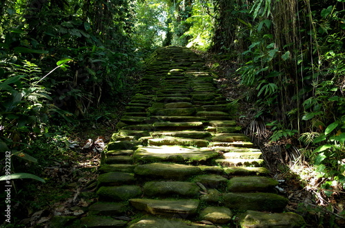 Fotografie, Obraz  Stone paths leading to Ciudad Perdida (Lost City) in Colombia
