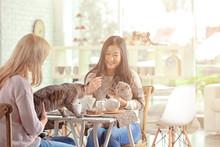 Happy Women Resting In Cat Cafe