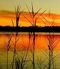 Fototapeta na wymiar sunset