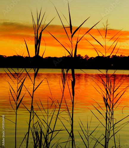 Obrazy na płótnie Canvas sunset