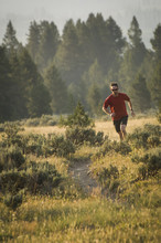 Male Trail Runner In Bighorn Pass Trail In The Gallatin Range, Yellowstone National Park, Wyoming, USA