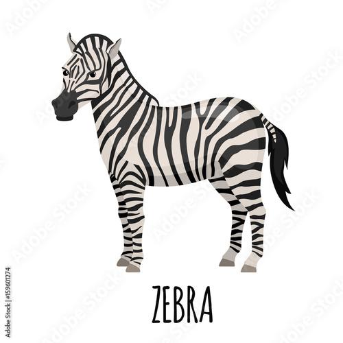 Tuinposter Zebra Cute Zebra in flat style