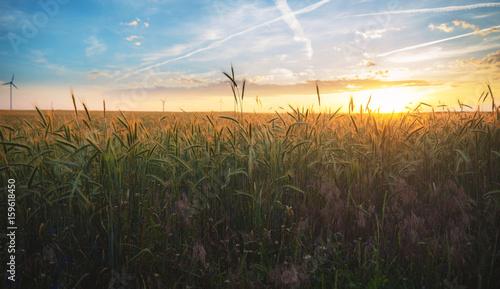 Foto op Aluminium Chocoladebruin schöner Sonnenuntergang über den Feldern in Österreich