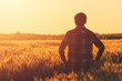 canvas print picture - Farmer in ripe wheat field planning harvest activity