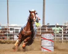 Run For The Line- Barrel Racing
