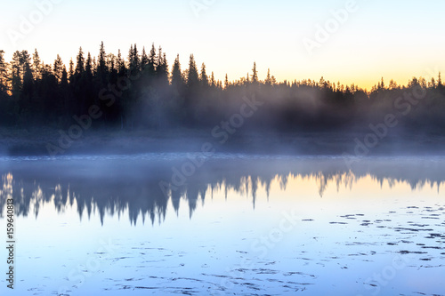Poster Morning with fog Trees reflecting from lake in swedish Lapland