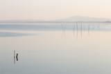 Mininalistyczny widok na jezioro, z kilkoma drewnianymi słupami na pierwszym planie i delikatnymi kolorami - 159685415