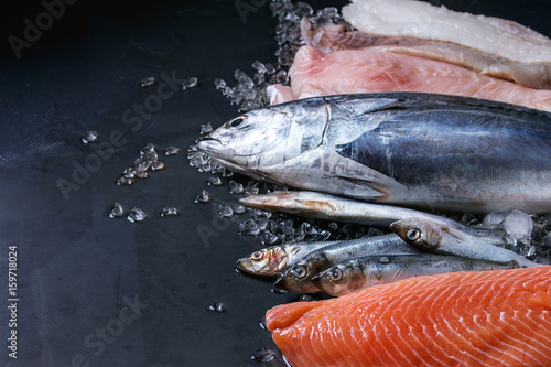 Keuken foto achterwand Vis Variety of raw fresh fish. Whole tuna and herring, fillet of salmon, cod, red fish on crushed ice over dark wet metal background. Close up with space. Fish market concept