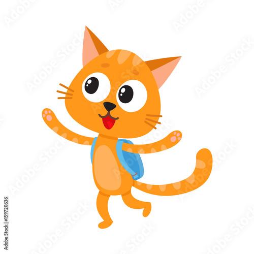 Cute little cat 1f8ffc2b7ad33