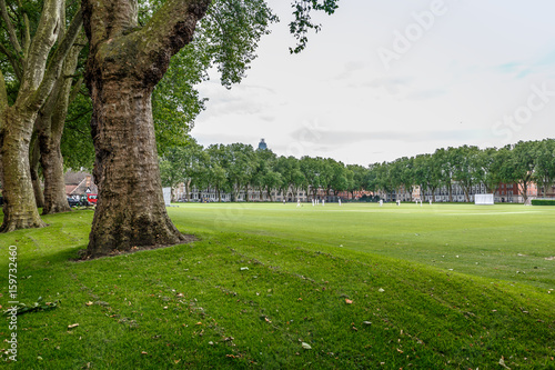 Fotografie, Obraz  Typical English park with large spaces for sports