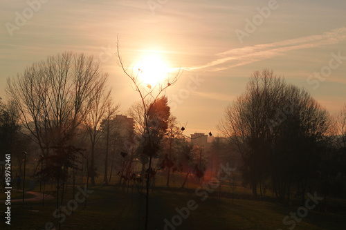 Photo Sunrise calm life in a natural park, countryside at sunset