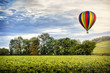 Hot air balloon over the vineyard at the sunset. Burgundy . France