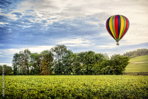 Fotografie, Obraz  Hot air balloon over the vineyard at the sunset