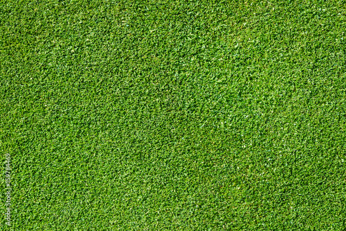 Deurstickers Golf Top view of golf course green as a background
