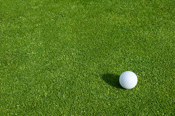 Fototapeta Side view of golf ball on a putting green