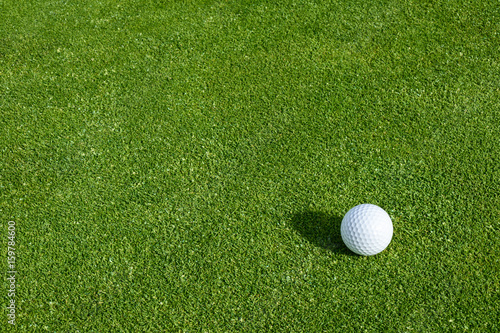 Tuinposter Golf Side view of golf ball on a putting green