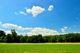 Fototapeta Na sufit - Pole, las i niebo z chmurami.