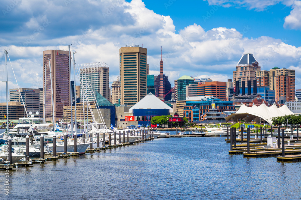 Fototapety, obrazy: A marina and view of the Inner Harbor in Baltimore, Maryland.