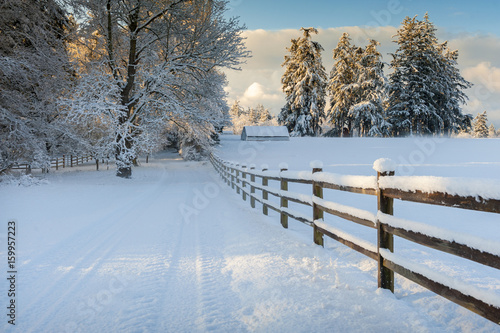 Beautiful Country Drive After a Snowstorm Canvas-taulu