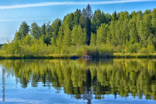 Fototapeten Forest river Landscape with trees, reflecting in the water