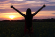 Silhouette of a happy girl with long hair at sunset in a field of flowers