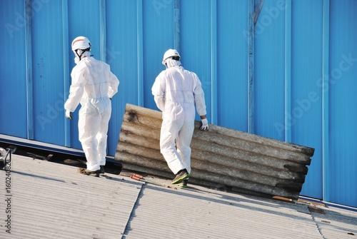 Trabajadores de amianto retiran tejado de fibrocemento en Alava (España) Wallpaper Mural