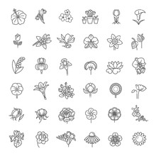Flower Icon Set - Vector Illus...