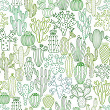 Vector Cactus Seamless Pattern. Hand Drawn Doodle Cacti Background