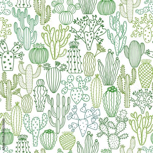 wzor-w-kaktusy