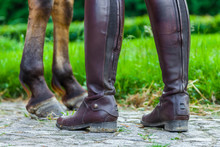 A Horsewoman In Riding Boots N...