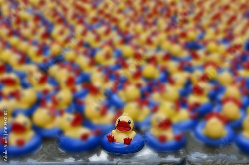 Fotografie, Obraz  verano chapuzon baño patito pato de hule goma agua