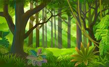 Rays Of Sun Light Entering Into A Dense Jungle
