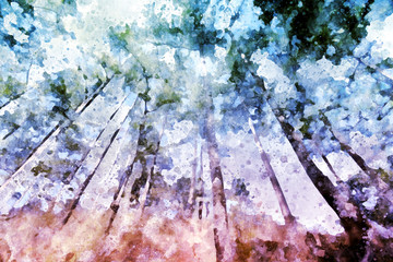 Fototapeta Pine forest with grass field, digital watercolor illustration