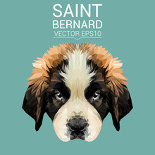 Saint Bernard Dog Animal Low Poly Design. Triangle Vector Illustration.