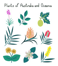 Plants Of Australia And Oceania