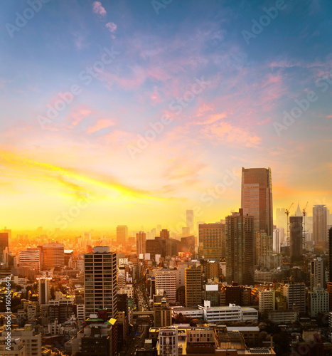 Canvas Prints New York Cityscape of Tokyo, city aerial skyscraper view of office building and downtown of modern busniess zone in tokyo with sunset / sun rise background. Japan, Asia,