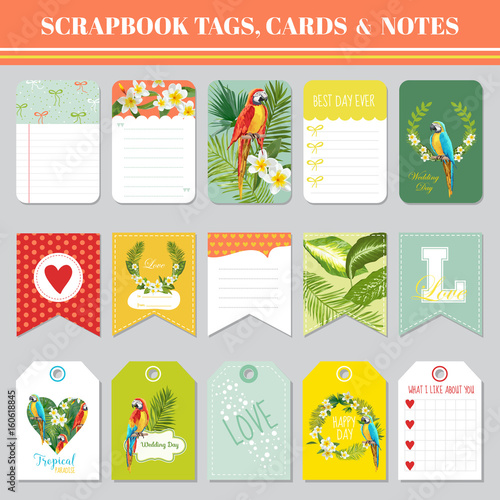 Tropical Flowers And Parrots Theme For Scrapbook Tags Cards And