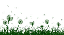 Green Grass Silhouettes With D...