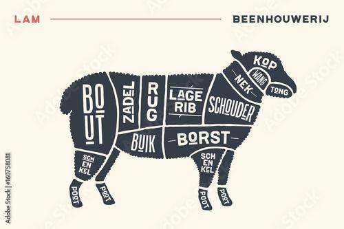 500_F_160758081_EK3ZfcJW0YDhsCIAacFkSP3OfJbKdYci meat cuts poster butcher diagram and scheme lamb vintage hand