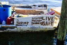 Live Bait Boat Advertising Home Style In Bradenton, FL, USA