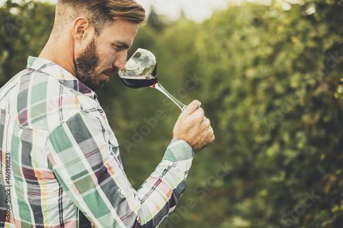 Fotomural Young winemaker tasting red wine in vineyard
