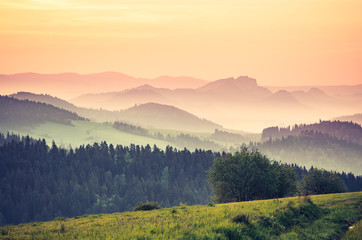 Fototapeta Krajobraz Moments before sunrise in misty Carpathian mountains, spring, Poland