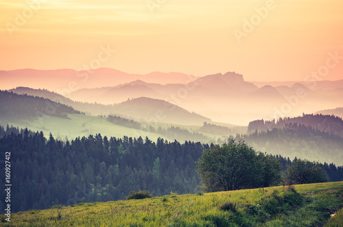 Moments before sunrise in misty Carpathian mountains, spring, Poland - 160927412